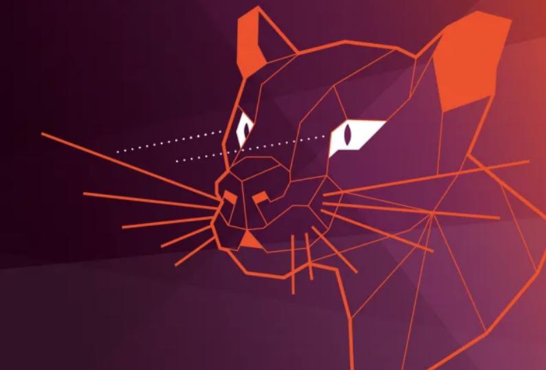 ubuntu focal fossa